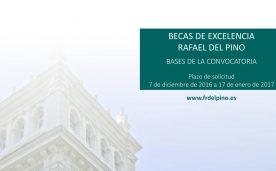 Bases convocatoria 2017